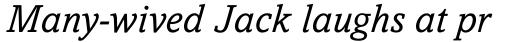 Amasis Pro Italic sample