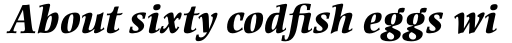 Ellington Pro Extra Bold Italic sample