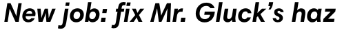 Harmonia Sans Std Bold Italic sample