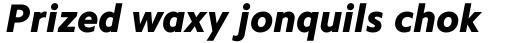 Camphor Pro HeavyItalic sample