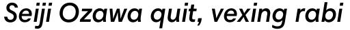 Harmonia Sans Paneuropean Semi Bold Italic sample