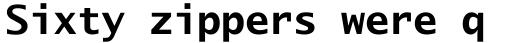 Lucida Sans Typewriter Std Bold sample