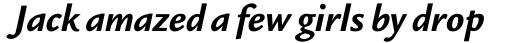 Legacy Sans Std Bold Italic sample