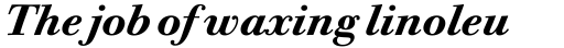 ITC Bodoni Twelve Std Bold Italic sample