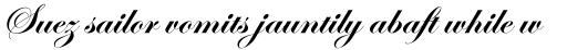 ITC Edwardian Script Std Bold sample