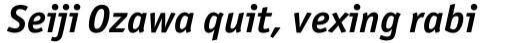 Officina Sans Pro Bold Italic sample