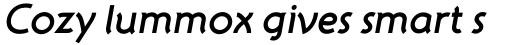 ITC Atelier Sans Std Bold Italic sample