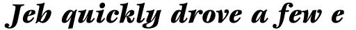 ITC Esprit Std Black Italic sample