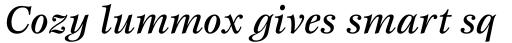 ITC Esprit Std Medium Italic sample