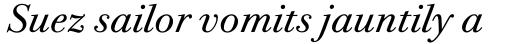 ITC Bodoni Twelve Pro Book Italic sample