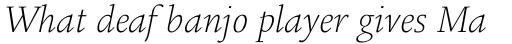 Legacy Square Serif Std ExtraLight Italic sample