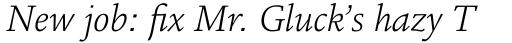 Legacy Square Serif Std Light Italic sample