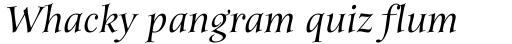 ITC Anima Medium Italic sample