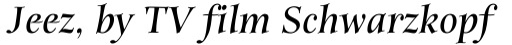 ITC Anima Bold Italic sample
