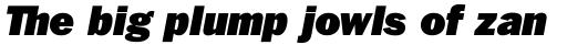 ITC Franklin Std Ultra Italic sample