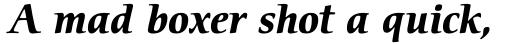 ITC Cerigo Pro Bold Italic sample