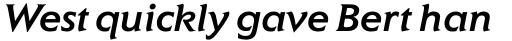ITC Elan Pro Medium Italic sample