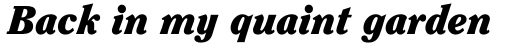 ITC Clearface Pro Black Italic sample