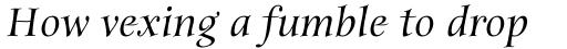 ITC Anima Std Medium Italic sample