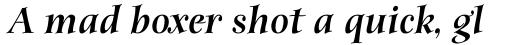 ITC Anima Std Black Italic sample