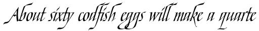 Ophelia Std Italic sample