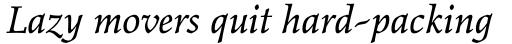 Elysium Pro Book Italic sample