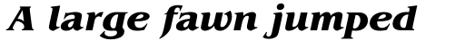 ITC Benguiat Pro Bold Italic sample