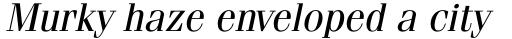 ITC Fenice Pro Oblique sample