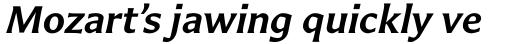 Carter Sans Pro SemiBold Italic sample