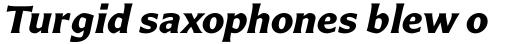 Carter Sans Pro Bold Italic sample