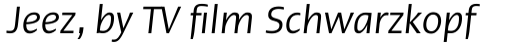 Linotype Ergo Com Condensed Italic sample
