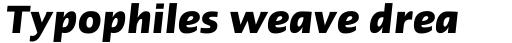 Linotype Ergo Com Bold Condensed Italic sample
