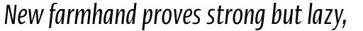 Linotype Ergo Com Compressed Italic sample