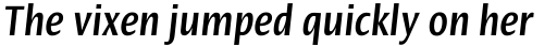 Linotype Ergo Com Bold Compressed Italic sample
