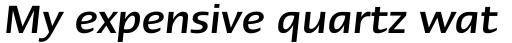 Linotype Ergo W2G Medium Italic sample