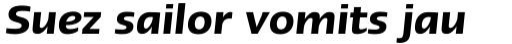 Linotype Ergo W2G Demi Italic sample