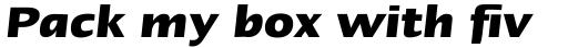 Linotype Ergo W2G Bold Italic sample