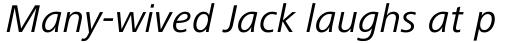 Frutiger Next Central European Italic sample