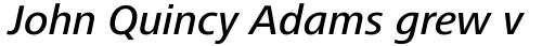 Frutiger Next Central European Medium Italic sample