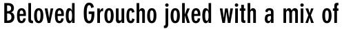 DIN Neuzeit Grotesk Pro Bold Condensed sample