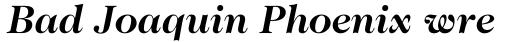 ITC Caslon No. 224 Std Bold Italic sample