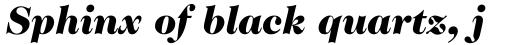 ITC Caslon No. 224 Std Black Italic sample