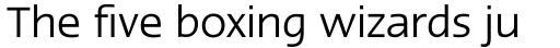 Linotype Ergo W2G Regular sample