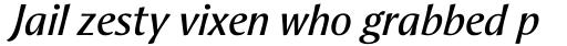 Aeris Pro Title B Italic sample