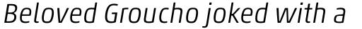 Akko Pro Light Italic sample