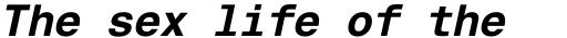 Helvetica Monospaced Pro Bold Italic sample
