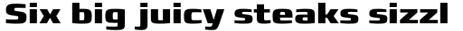 Francker Std Cyrillic Condensed Extra Bold sample
