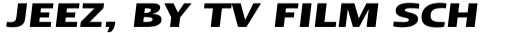 Linotype Ergo Hebrew Bold Italic sample