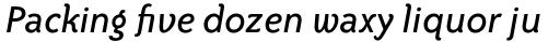 ITC Bailey Sans Std Book Italic sample