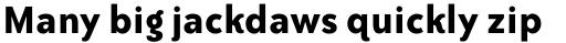 ITC Bailey Sans Std Bold sample